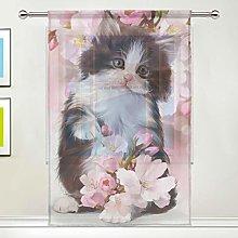 CPYang Sheer Curtain Cute Animal Cat Flower Voile