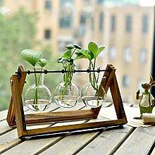 Creative Green Dill Copper Grass Transparent Glass
