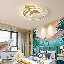 Creative LED Dimmable Children's Room Ceiling