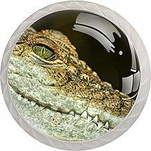 Crocodile Kitchen Cabinet Pulls 1.18 Inch Crystal