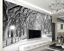 Custom 3D Wallpaper Modern Black Road Snow Scene