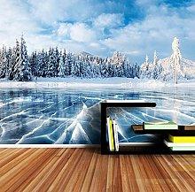 Custom 3D Wallpaper Winter Frozen Lake Ice and