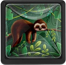 Cute Animal Sloth 3 Pack Crystal Glass Cabinet