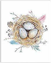 Cute Bird Nest Print Watercolour Natural Feather