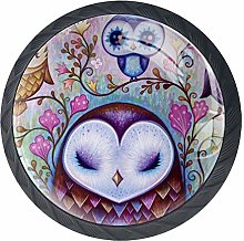 Cute Owls Cabinet Dresser Drawer Knobs Glass Pull