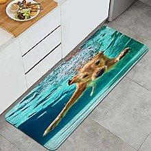 CVSANALA Anti-Fatigue Kitchen Floor Mat,training