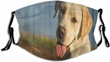 Cycling Mask Animal Yellow Labrador Retriever Dog