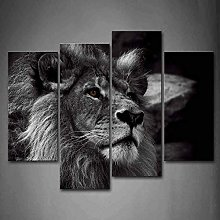 Cykably Black And White Gray Lion Head Portrait
