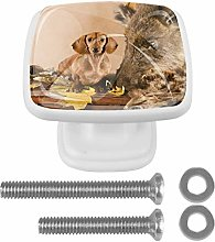Dachshund with A Hunting Trophy Drawer Knob for