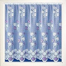 Daisy Purple and Pink Marigold Net Curtain Pretty