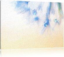 Dandelion Clock Close-Up Graphic Art Print on