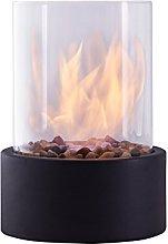 Danya B. Indoor / Outdoor Portable Tabletop Fire