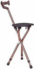 DAQUANTOU Convenience Walking Stick Chair, Folding