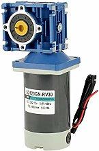 DC 12V/24V Electric Motor Gear Motor for