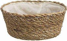 Dcasa Round Bread Bin Bento Lunch Boxes Food