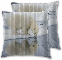 DECISAIYA Throw Pillow Covers Pack of 2,Polar Bear