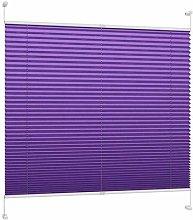 DecoProfi Plissee, violet, braced, width 55 cm x