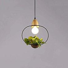 Decorative light chandelier /Plant Glass