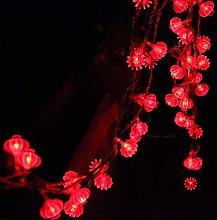 Deeabo 5 Meter 50 LED Red Lanterns String Lights,