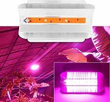 Delaman Led grow lights full spectrum plant led,