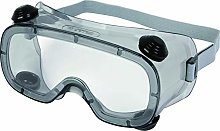 Delta Plus Clear Safety Goggles - Indirect