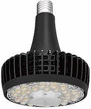 Derybol LED downlight 60W 100W 150W E40 E39 Fin