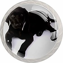 Desheze Furniture Knobs Black Labrador Kitchen