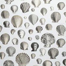 Designers Guild Captain Thomas Brown's Shells