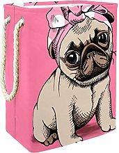 DEYYA French Bulldog Pattern with Pink Headband