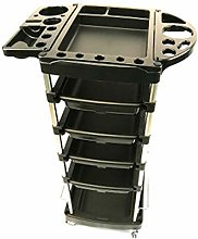 Dfghbn Storage Trolley Cart Hairdressing Trolley,