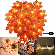 DHHSUK LED Maple Leave Lights, Battery Powered