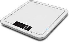 Digital Kitchen Scale Salter