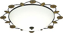 Dimmable Ceiling Light,With High Light
