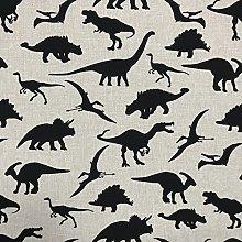 Discover Direct Jurassic Dinosaur Black Design