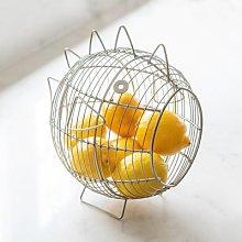 Distinctly Living - Sea Life Basket - Fish - Silver