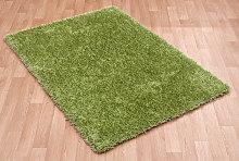 Diva Diva Green Rectangle Plain/Nearly Plain Rug