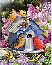 DIY 5D Diamond Painting by Number Kits-Aviary and