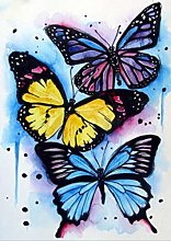 DIY 5D Diamond Painting Kits Color Butterfly Full