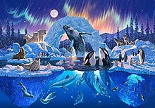 DIY 5D Diamond Painting Kits Dolphin Penguin Full