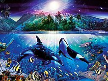 DIY 5D Diamond Painting Kits Turtle Dolphin Full
