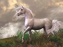 DIY 5D Diamond Painting Kits White Horse Full