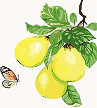 DIY Number Painting Drawing Canvas Yellow Fruit