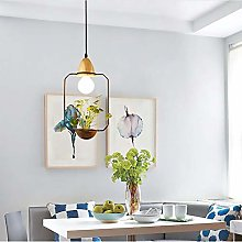 DKee ceiling light Creative Potted Led Personality