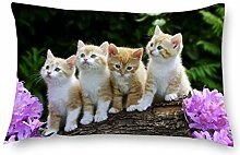 DKISEE Decorative Throw Pillow Cover Rectangle