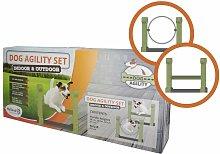 Dog Agility Set Indoor & Outdoor - Green - Holland