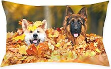 Dog1pc Room, Sofa Pillowcase, Rectangle Zipper