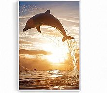 Dolphin Poster Sea Oceansunset Dolphin Canvas