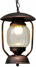 Dome Light Glass Chandelier, Industrial Style Iron