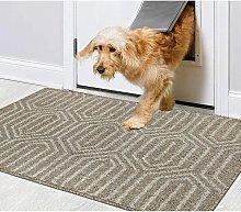 Doormat Machine Washable Door Mat Entrance