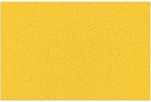 Doormat with Heavy Duty Non-Slip PVC Backing Solid